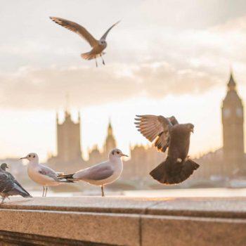 Embankment in London UK